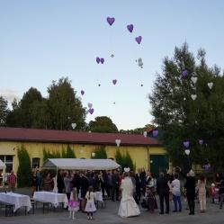 Zur Hochzeit-Ballons steigen lassen-DJ Mario Schulz